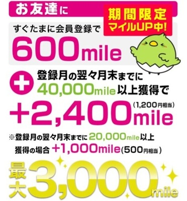 【追記あり】7000円程のお小遣いのやつ、申し込みました!