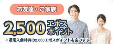 500_02.jpg