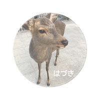 【固定】各種サイト、ポイントサイト等登録はこちらから(^^)/