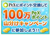 マクロミル→PeX ポイント交換山分けキャンペーン